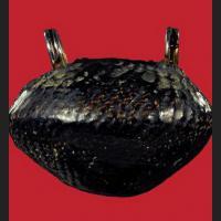 BeaKae (Sacred Shell) !!