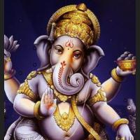 PiKaNet Elephant Head ( Ganesha God of Success) !!