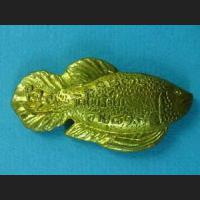 FISH Talisman !!